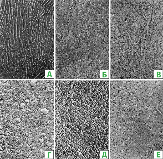 The microstructure of the rail carbon proeutectoid steel after quenching from accelerated heating to different temperatures